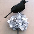 black-crow-topiary17-done-250x282