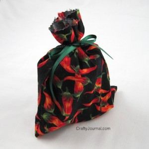 Crafty Journal - Easy Reusable Fabric Gift Bag