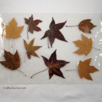 Fall Leaf Placemat