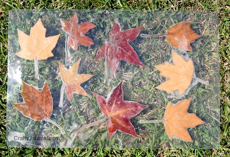 Crafty Journal - Fall Leaf Placemat