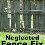 Neglected Fence Fix