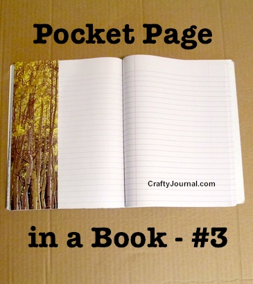 Pocket Page in a Book - Idea #3 by Crafty Journal